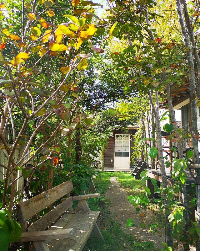 洋風のお庭12