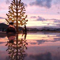 「美しい」を表現する言葉を厳選。覚えていて損はない、言葉の響きも素敵な日本語