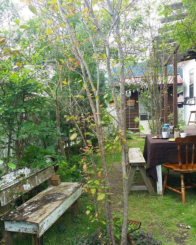 北欧ナチュラルな可愛い庭が人気