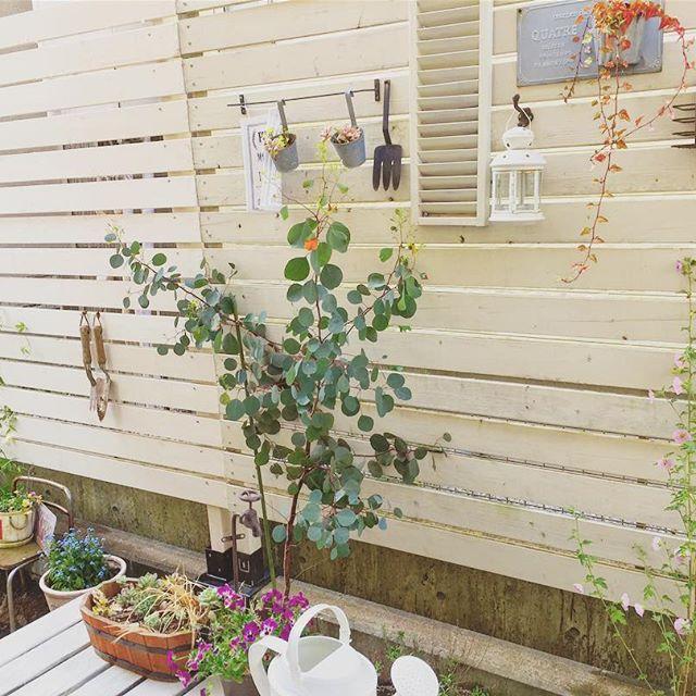 小さなスペースでも可愛い庭をDIY