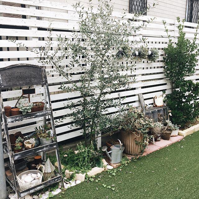 庭の周辺に集中させて可愛い庭に