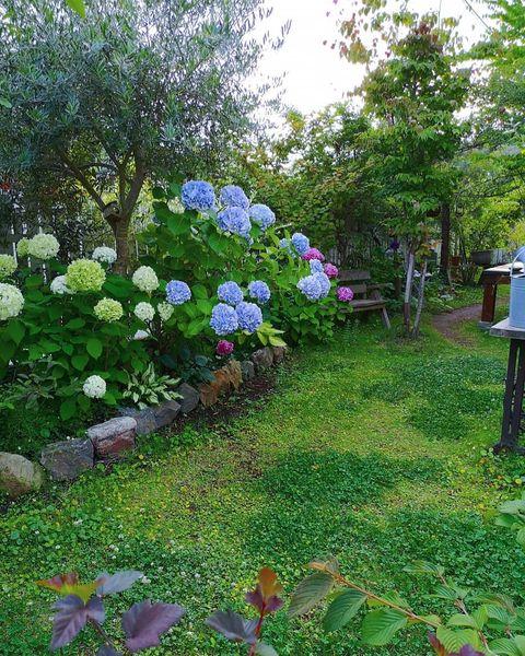 洋風のお庭7