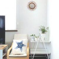 心地よい空間作りにおすすめの観葉植物15選。リビングで育てやすい種類まとめ