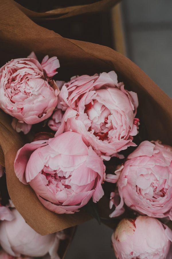 ありがとう、の気持ちを込めて。カーネーションだけじゃない、母の日に贈りたいお花7選