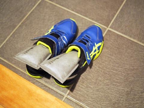 靴のカビもこれで安心