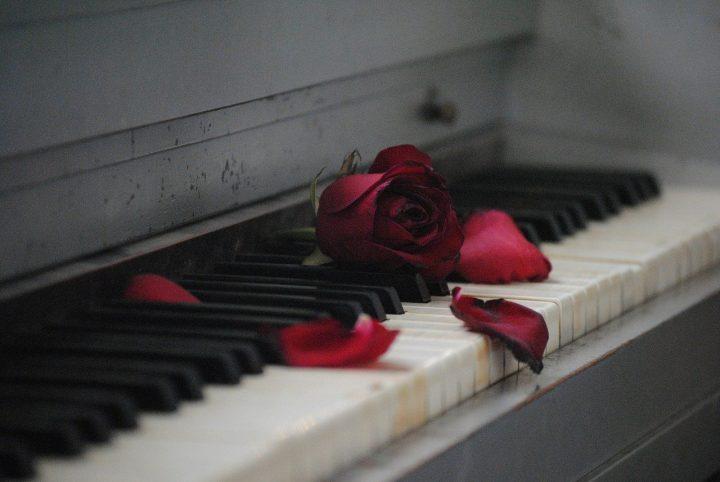 恋愛にまつわる四字熟語《失恋》