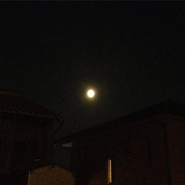 月のつく熟語「佳月」