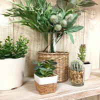 自分らしいガーデニングは鉢植えのリメイクから。簡単なおしゃれアイデア実例集