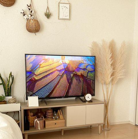 テレビ台横を使ったパンパスグラスインテリア