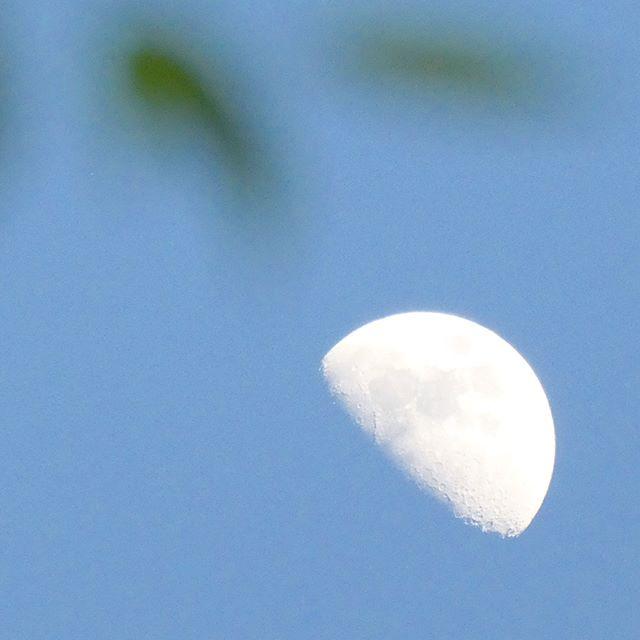 月のつく熟語「暁月夜」