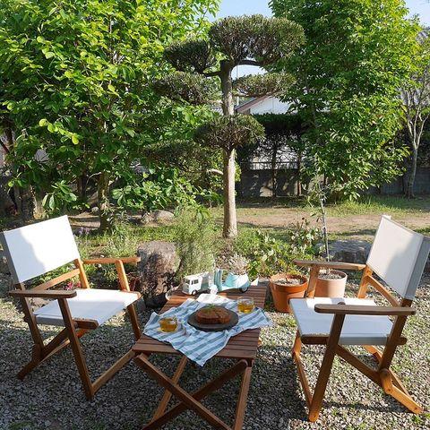 和モダンな庭に日本を感じさせる松