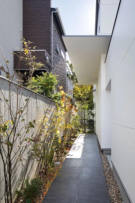 モダン邸宅のおしゃれなアプローチ庭デザイン