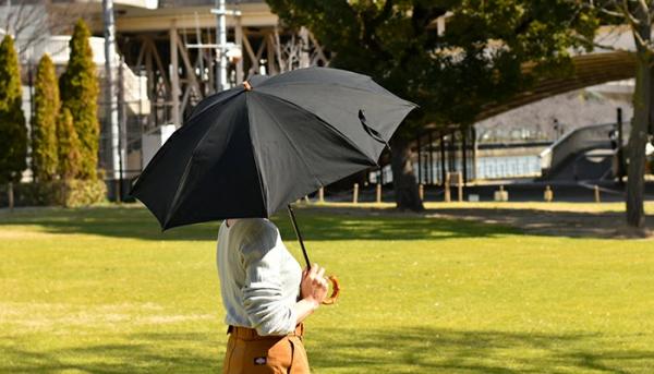 これからの季節、大活躍なCINQの傘2