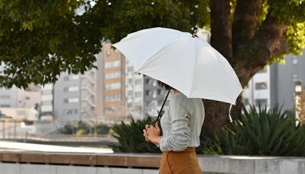 これからの季節、大活躍なCINQの傘3