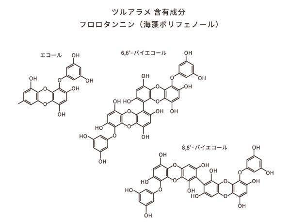 最近注目の花粉症に効く海藻ポリフェノールって?