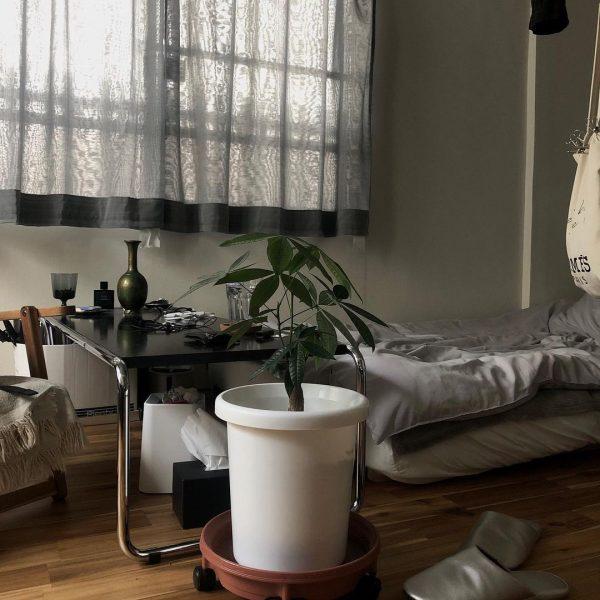 8畳の一人暮らしインテリア10