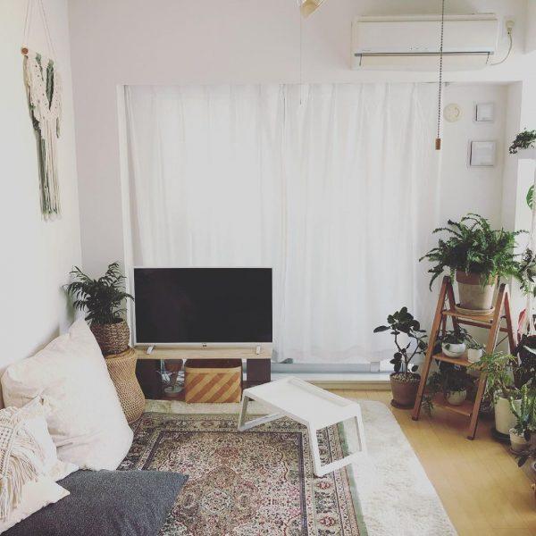 植物と暮らす2LDK4