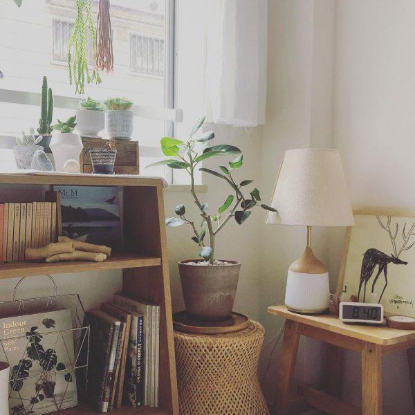 植物にとっても、自分たちにとっても居心地のよい空間にしたい4