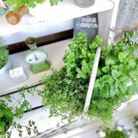 簡単DIYでおしゃれな庭に大変身。初心者でも挑戦しやすいアイデア実例まとめ