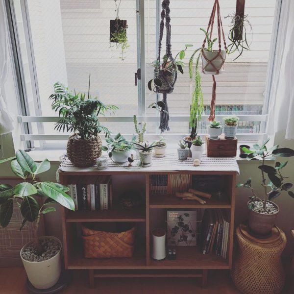 植物にとっても、自分たちにとっても居心地のよい空間にしたい2