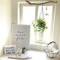 センス良く飾る、出窓のインテリア特集。バランス良いおしゃれな配置方法16選