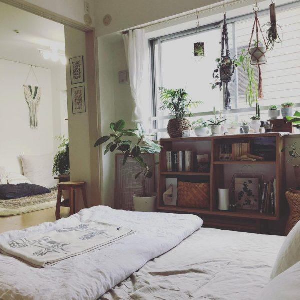 植物にとっても、自分たちにとっても居心地のよい空間にしたい