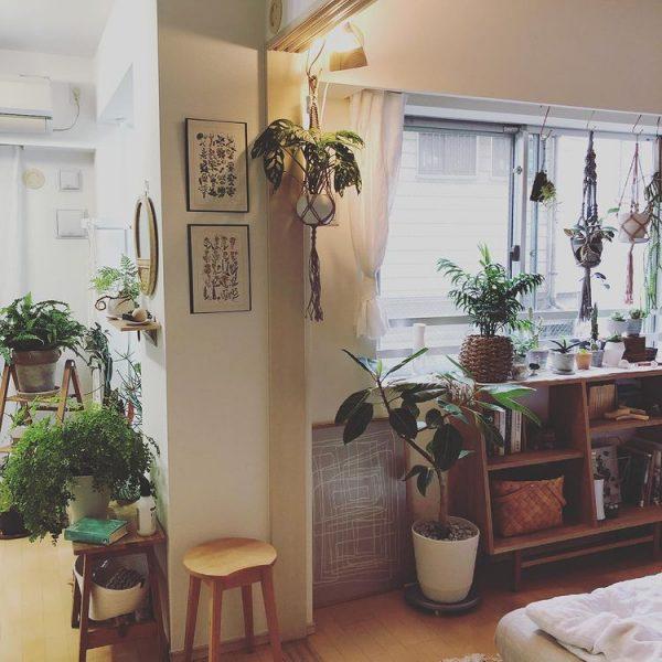 植物にとっても、自分たちにとっても居心地のよい空間にしたい6