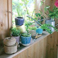 観葉植物を自分らしく飾ろう。おしゃれな「鉢」でもっと素敵なインテリアを作る