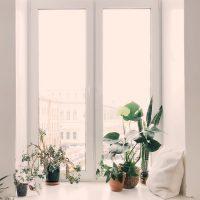 リビングの窓をおしゃれにするには?見落としがちな空間におすすめしたいアイデア