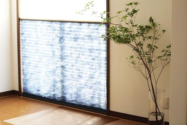 和室×観葉植物のインテリア実例9