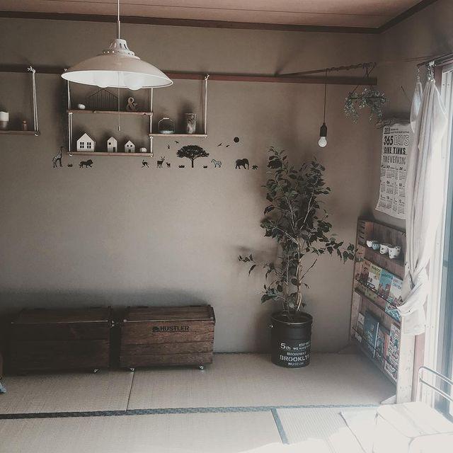 和室×観葉植物のインテリア実例3