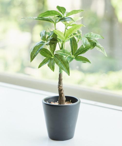 〈ミニ観葉植物・フェイクグリーン〉ブラックポットTS