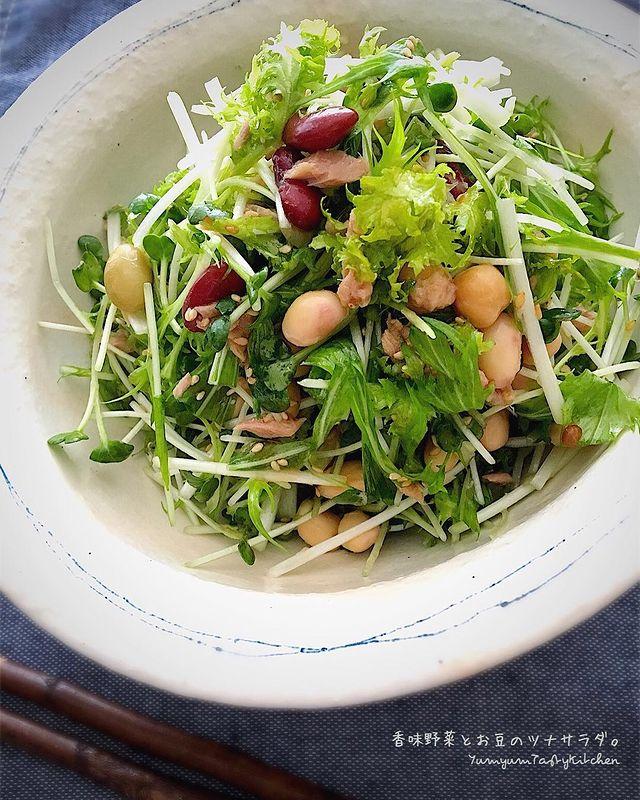 子供が大満足!水菜と豆のツナサラダレシピ