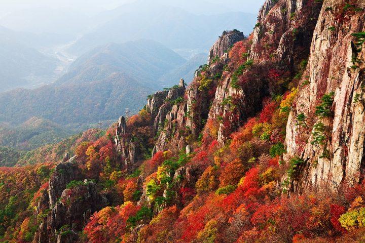 美しい秋の言葉《季語》