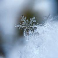 《冬を表す美しい言葉》を集めました。季節を肌で感じるような綺麗な言葉をどうぞ