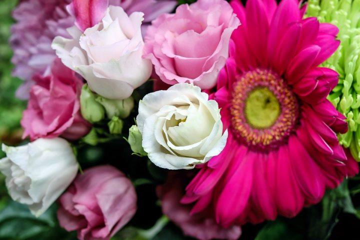 かっこいい花言葉《夏の花》
