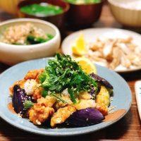 バリエ豊富な鶏肉×なすレシピ14選。メイン〜おかずまで食事がすすむ人気メニュー