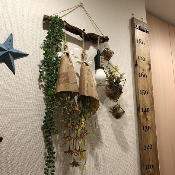壁の流木に吊り下げた実例